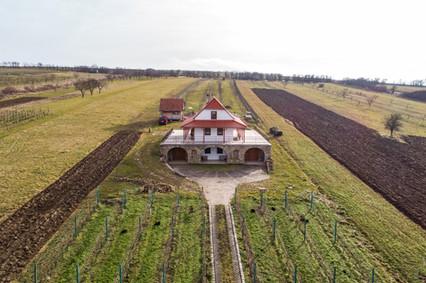 Víno Hladký_3.jpg