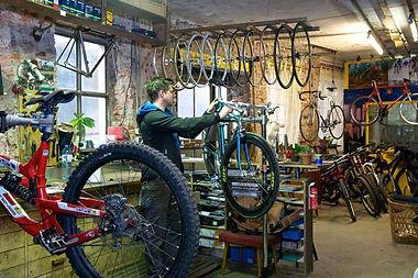 bikes.jpeg