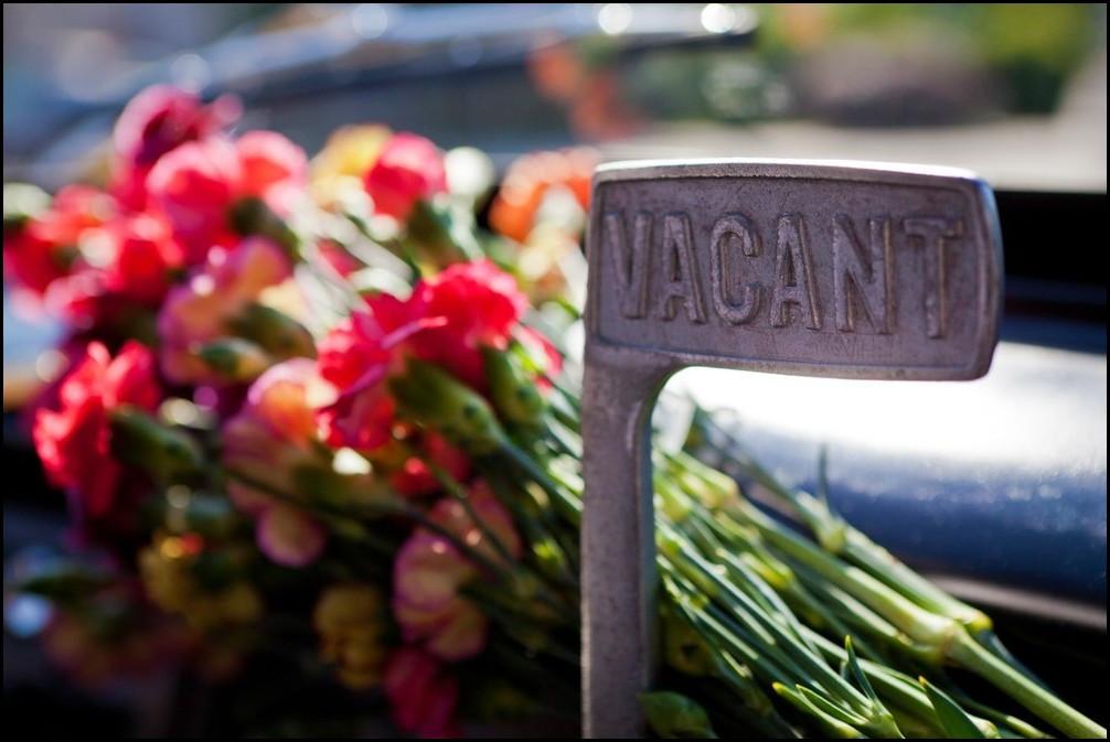 Meter in bloom.jpg