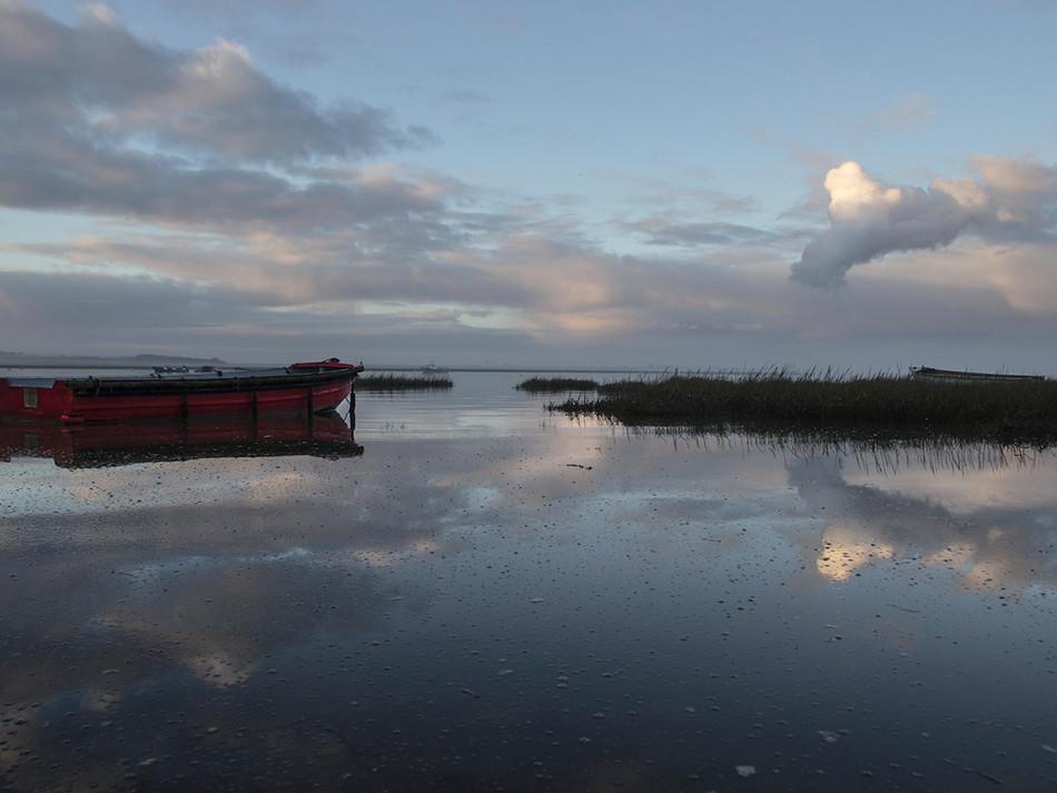 simon fowler_photography_04_chalkwell beach_morning_essex.JPG