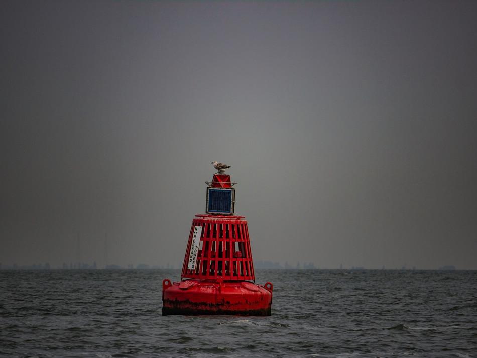 simon fowler_MAUNSELL SEAFORTS thames estuary-580762664lr.JPG