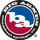 Big Agnes logo.png