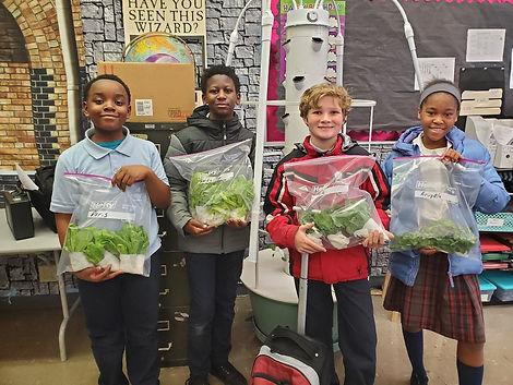 Greens Donations .jpg