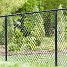 permanent fence.jpg