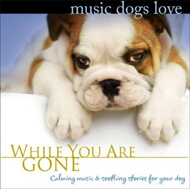 Music Dogs Love