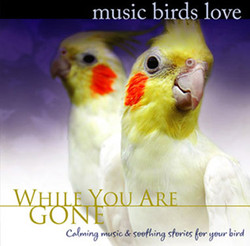 Music Birds Love