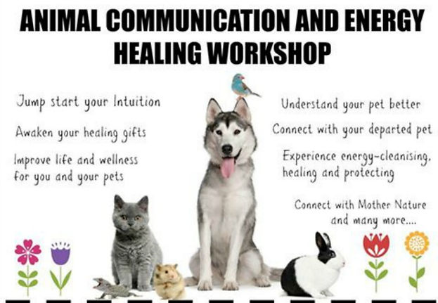 Animal communication and energy healing workshops in singapore Decemeber 2015
