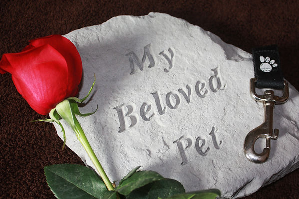 Connect with Departed Pet