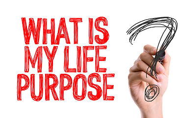 Discover Life Purpose
