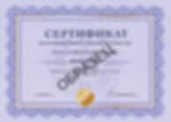 сертификат для сайта.png