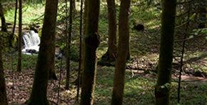 photo22-randonnee-a-pied-bruno-muzzatti.