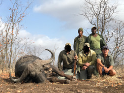 2019 BUFFALO HUNTING - SHAUN BUFFEE SAFARIS