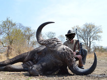 2015 BUFFALO HUNTING - SHAUN BUFFEE SAFARIS