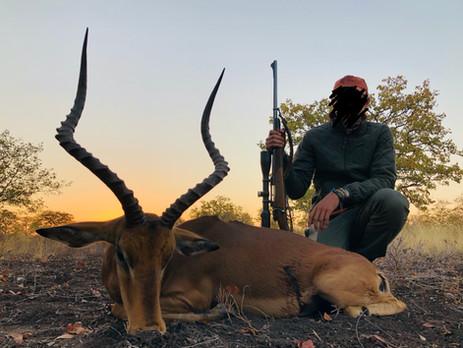 2019 IMPALA HUNTING - SHAUN BUFFEE SAFARIS