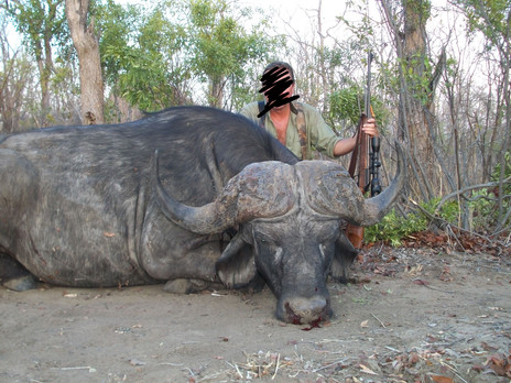 2014 BUFFALO HUNTING - SHAUN BUFFEE SAFARIS