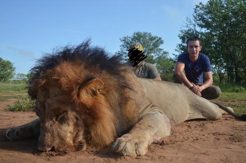 2014 LION HUNTING - SHAUN BUFFEE SAFARIS