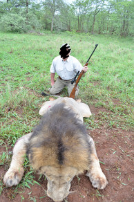 2017 LION HUNTING - SHAUN BUFFEE SAFARIS