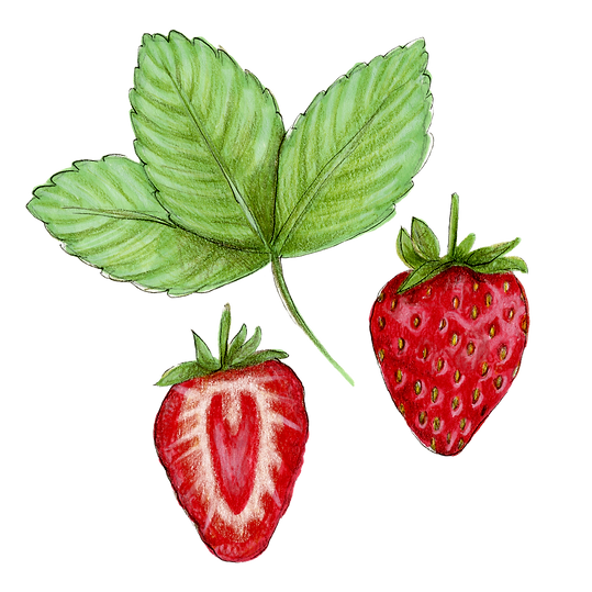 strawberry + leaves.png