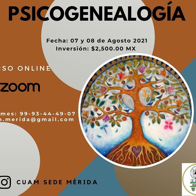 Curso Psicogenealogia