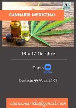 WhatsApp Image 2021-09-05 at 18.17.31 (2)