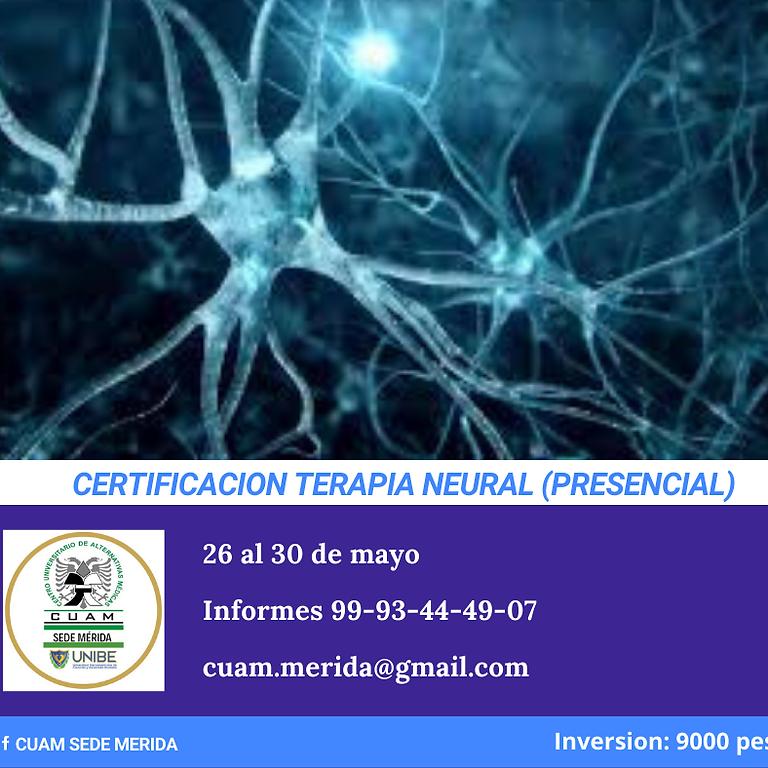 Certificación de Terapia Neural
