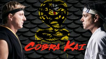 Cobra Kai: o papel da redenção nas nossas vidas