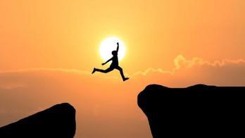 Vontade: a Sabedoria que rege os nossos passos