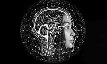 A busca pela consciência no século XXI