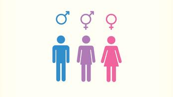Teoria de Gênero ou Confusão de Gênero?