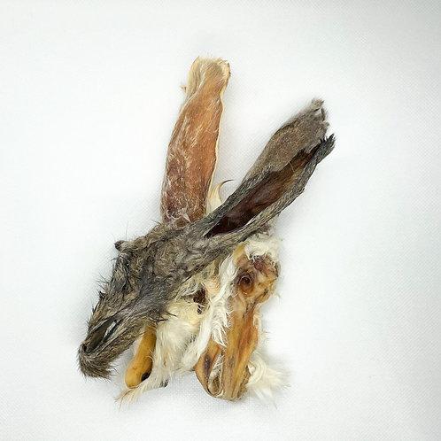 Orecchie di coniglio con pelo