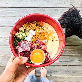 BARF-diet-for-dogs-1.jpg