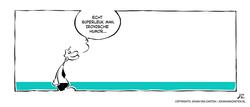 johan_van_zanten-swah-ironie-humor
