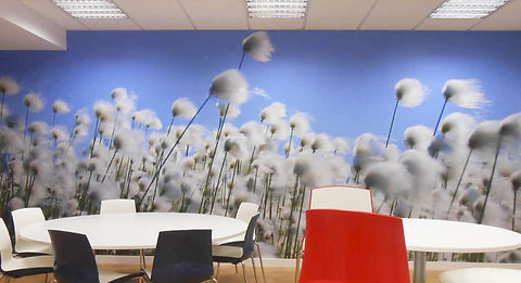 BREAK OUT AREA WALL MURAL.jpg