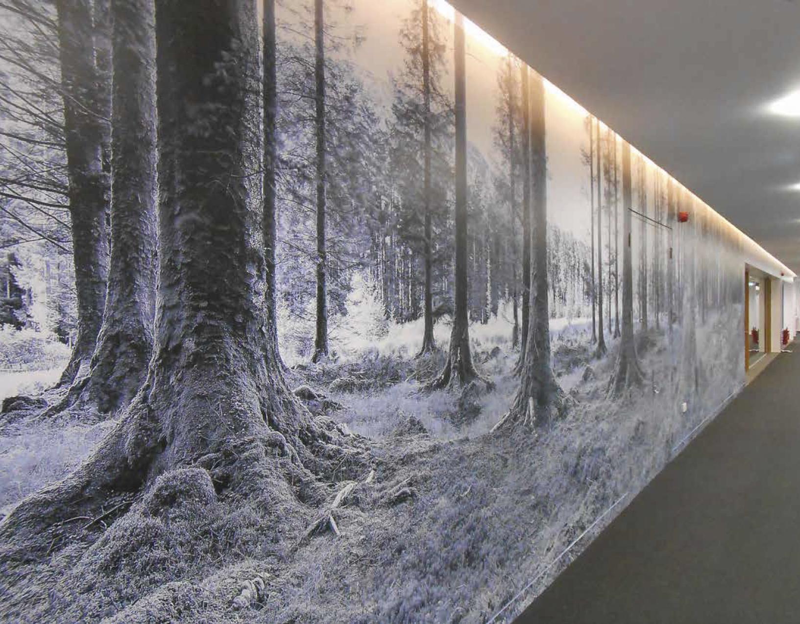 vinyl wallpaper mural.jpg