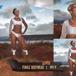 fem bodywear2.jpg