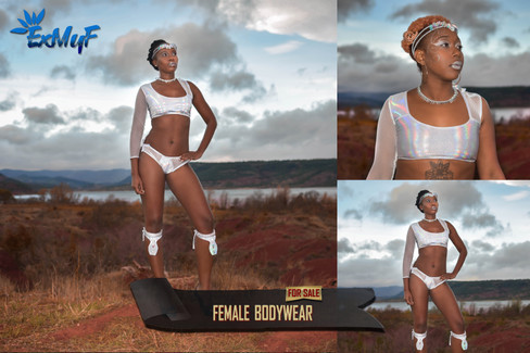 fem bodywear2sans.jpg