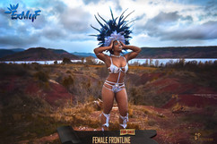 fem frontline 3sans.jpg