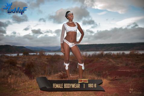 fem bodywear1.jpg