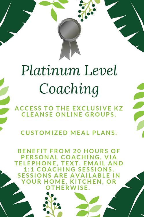 Platinum Level Coaching