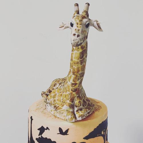 Giraffe Safari Cake