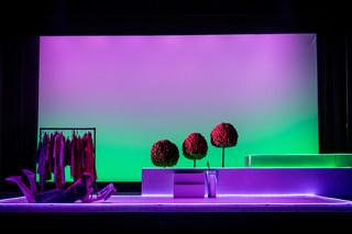 ram-opera-scenes-072.jpg