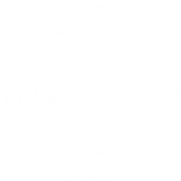 JRDroseRosewhite-01.png