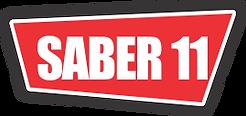 SABER 11.png