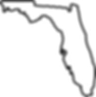 FL 2016 election
