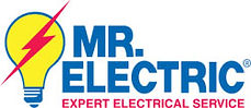 Mr electric franchise for sale