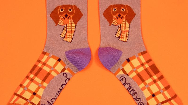 Pringle Sausage Dog Ankle Socks Lilac