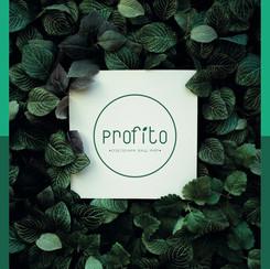Profito Logo.jpg