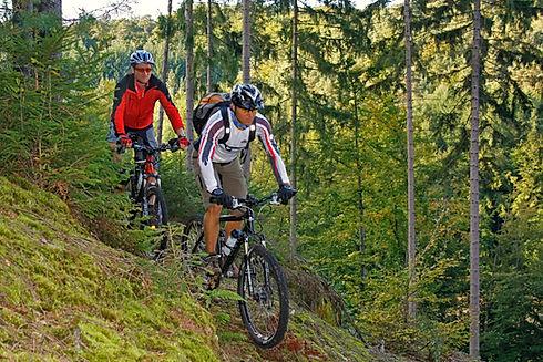 Mountainbiken im Pfälzerwald