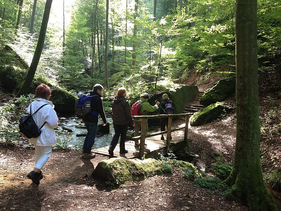 Wandern im Pfälzerwald