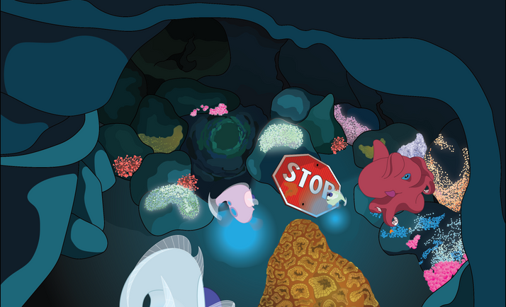 The geode cave entrance